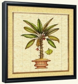 Banana Palm 1  -Canvas Art Print