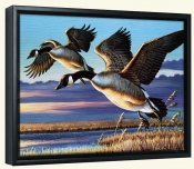 Geese Dropping In-CF-Canvas Art Print
