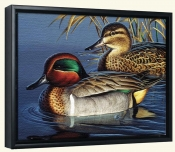 Green Wing Teal Couple-CF-Canvas Art Print