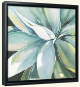 Agave   -Canvas Art Print
