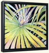 Palm Frond   -Canvas Art Print