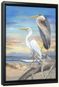 Coastal Herons-MT-Canvas Art Print