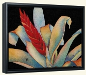 Bromeliad II   -Canvas Art Print