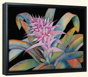 Bromeliad III   -Canvas Art Print