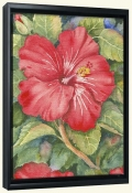 Hibiscus   -Canvas Art Print