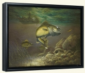 Taking The Bait-JH-Canvas Art Print