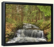 Mountain Stream-SA-Canvas Art Print