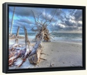 Washed Out Beach-SA-Canvas Art Print