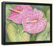 Anthurium   -Canvas Art Print