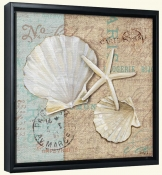 Linen Shells I-PB-Canvas Art Print