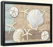 Linen Shells Collage-PB-Canvas Art Print