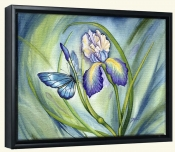 Lovely Iris-DF-Canvas Art Print