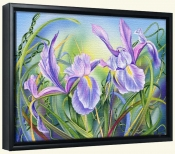 Spring Iris-DF-Canvas Art Print