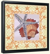 Seashell Square 3-DF-Canvas Art Print