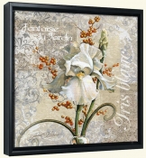 White Iris Fantasy-JS-Canvas Art Print