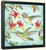RS-Calliopes Hummingbirds-Canvas Art Print