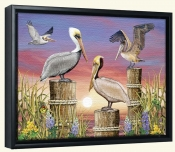 Pelicans-RS-Canvas Art Print
