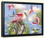 Roseate Spoonbills-RS-Canvas Art Print