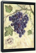 TK-Pinot Noir-Canvas Art Print