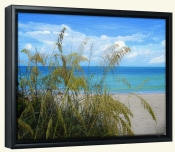 Sea Grass in the Breeze-Canvas Art Print