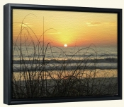 Sunset Seagrass-Canvas Art Print