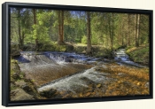 Mountain Stream 2-Canvas Art Print