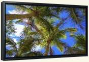 Under the Palms-Canvas Art Print