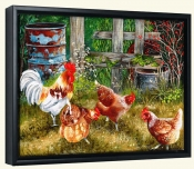 Pickin Chickens-VS-Canvas Art Print
