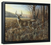 Bluff Country Buck-JH-Canvas Art Print