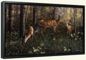 Emerald Forest-JH-Canvas Art Print