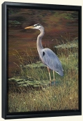 Heron Blue-LSH-Canvas Art Print