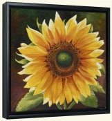 Yellow Sunflower-LSH-Canvas Art Print
