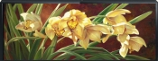 Golden Cymbidium Orchid-LSH-Canvas Art Print