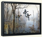Backwater   -Canvas Art Print
