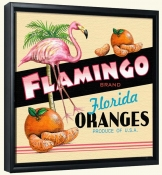 LS-Flamingo Orange   -Canvas Art Print