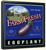 LS-Farm Fresh Eggplant   -Canvas Art Print