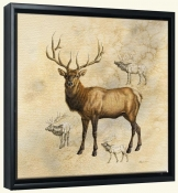 Elk-JG-Canvas Art Print