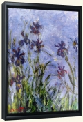 Irises   -Canvas Art Print