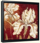 RH-White Iris  -Canvas Art Print