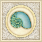 DM-By The Shore - Seashell 1  - Accent Tile