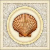 DM-By The Shore - Seashell 7 - Accent Tile