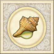 DM-By The Shore - Seashell 10 - Accent Tile