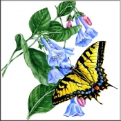Tiger Swallowtail Butterfly with Flowers    - Tile Mural
