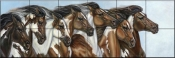 Painted Ponies-CM - Tile Mural