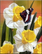 Daffodils And Butterfly    - Tile Mural
