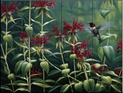 Ruby Throat Hummingbird and Monarda    - Tile Mural